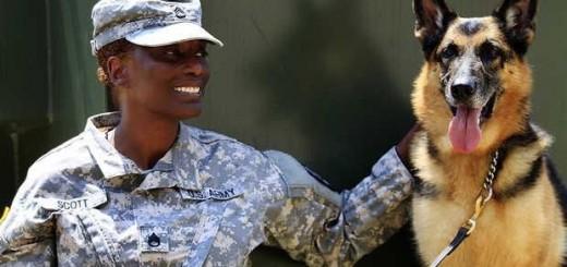 soldierdog