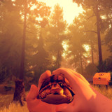 firewatch_turtle