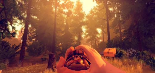 firewatch_turtle